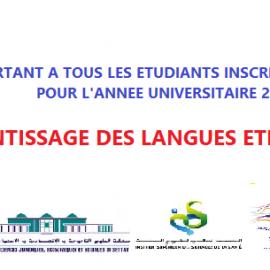 Enseignement à distance des langues étrangères