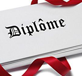 Important! Formulaire de demande de Diplôme (DEUST, LST, MST, FI)